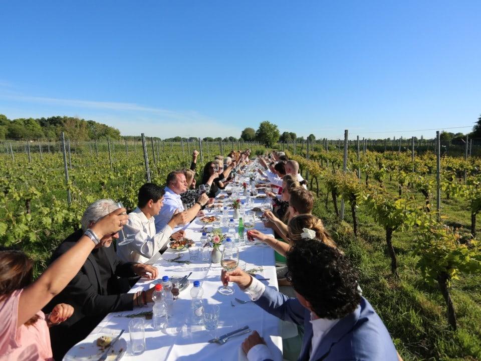 Lange tafel met proostende mensen tussen de wijnranken