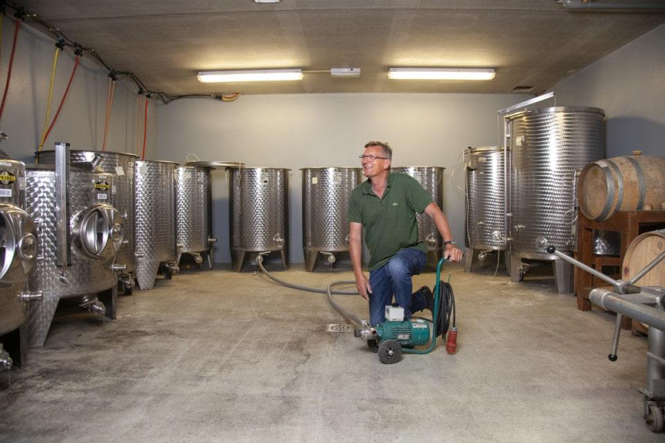 Wijnkelder met wijnvaten
